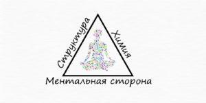 Треугольник здоровья.